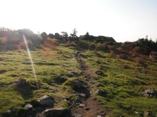 Greyson Highlands