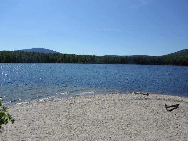 A sandy beach in the Maine woods