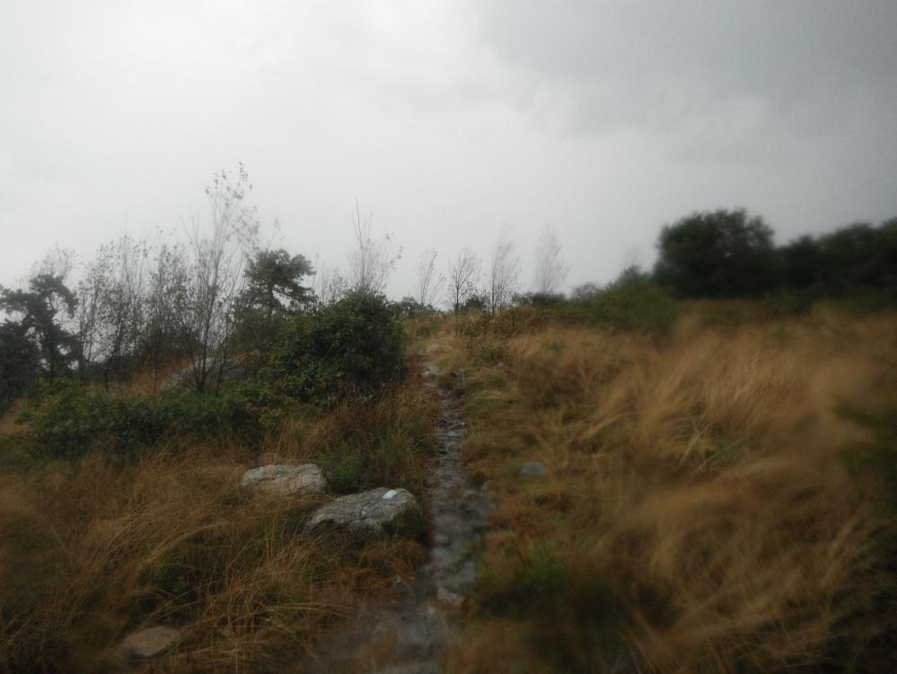 A rainy ridgeline