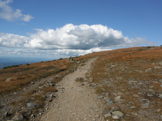 South of Moosilauke's summit