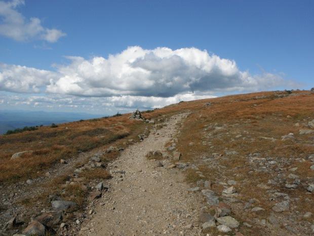 South of Moosilauke's summit