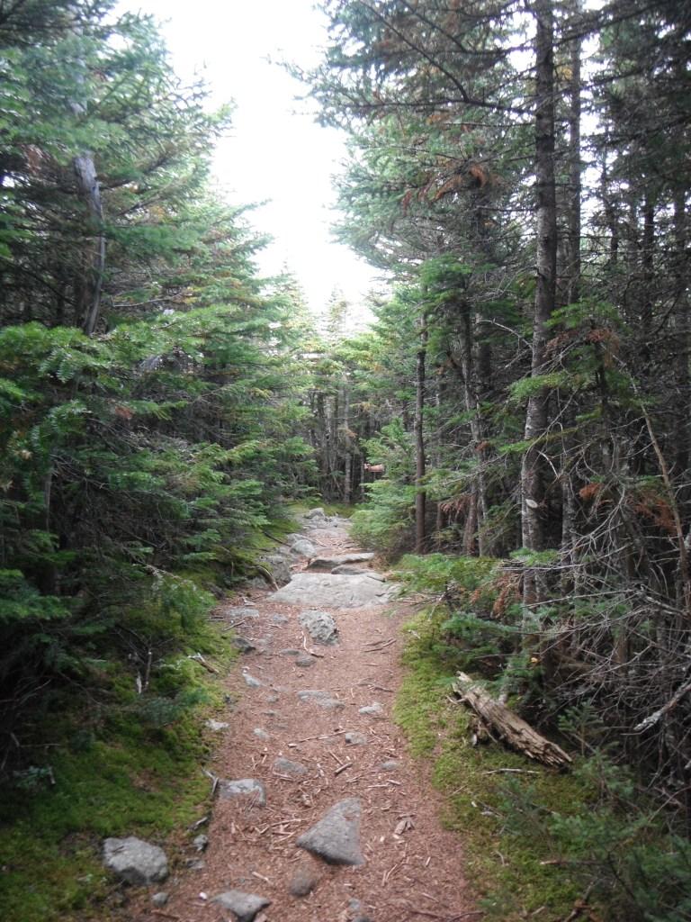 Peace below treeline