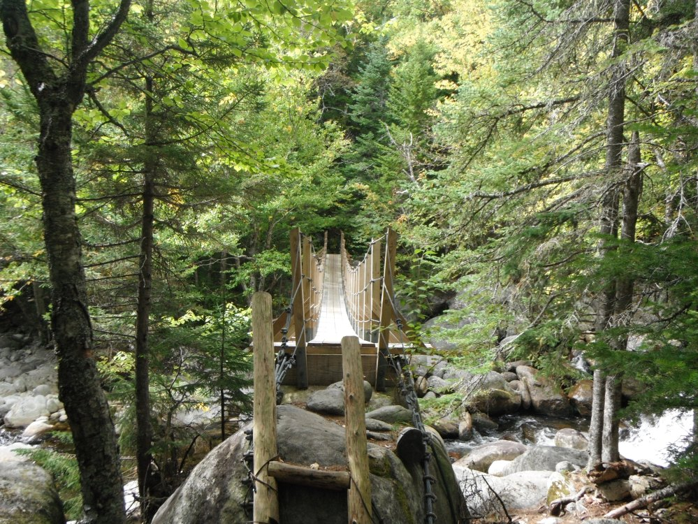 A bridge over a rushing brook