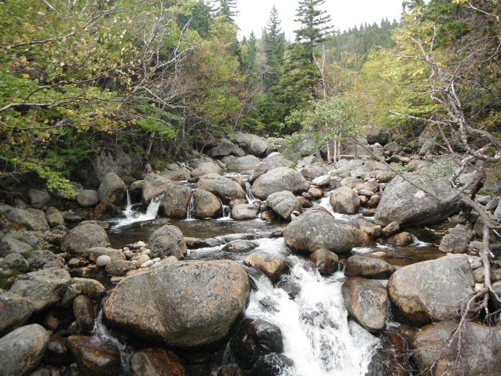 Nothing beats New England streams