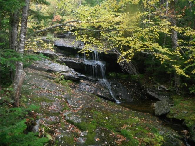 A trailside cascade