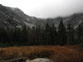 Looking up toward Katahdin